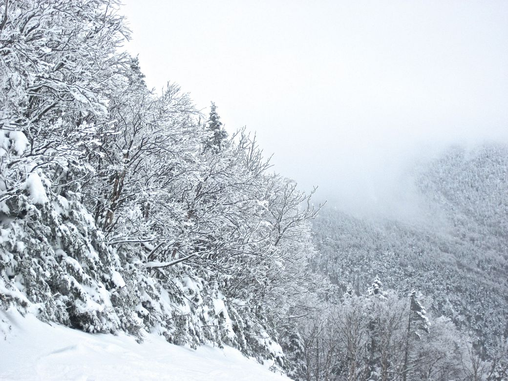 sugarbush heavens gate mountain fog