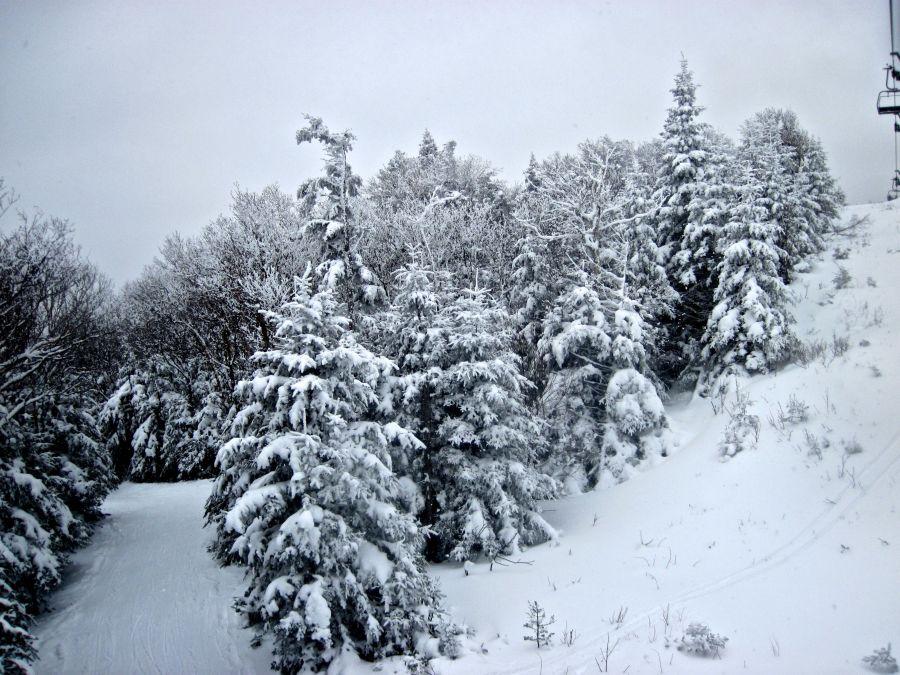 sugarbush mount ellen lift snow trees 2