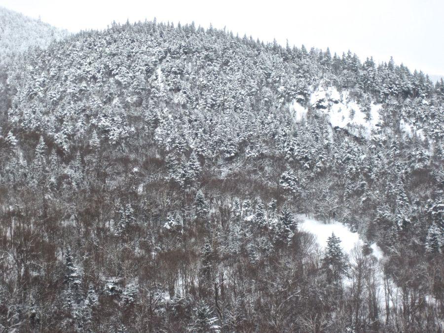 sugarbush mountain curve
