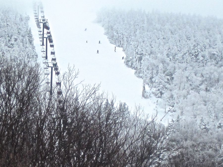 sugarbush white trees lifts
