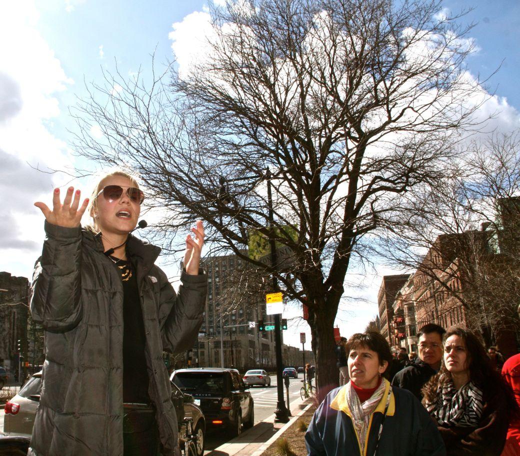 boston boston university tour guide commonwealth avenue