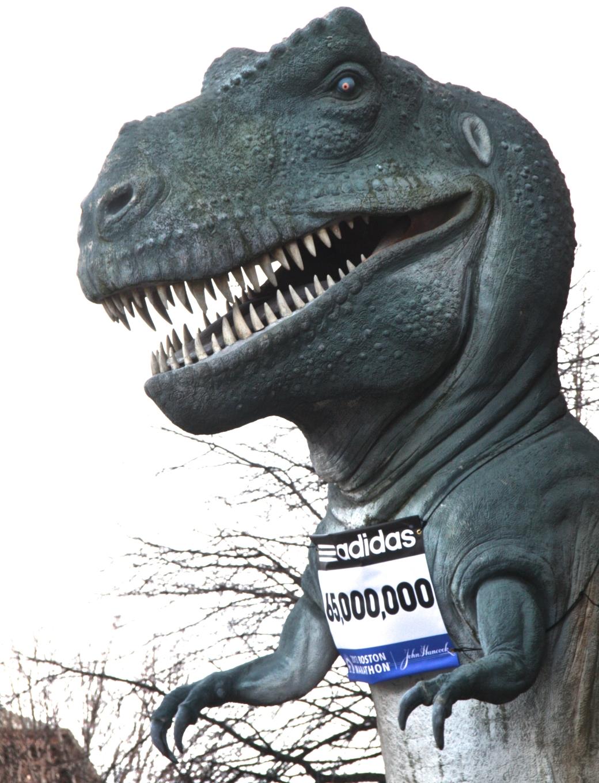boston science museum t rex marathon number