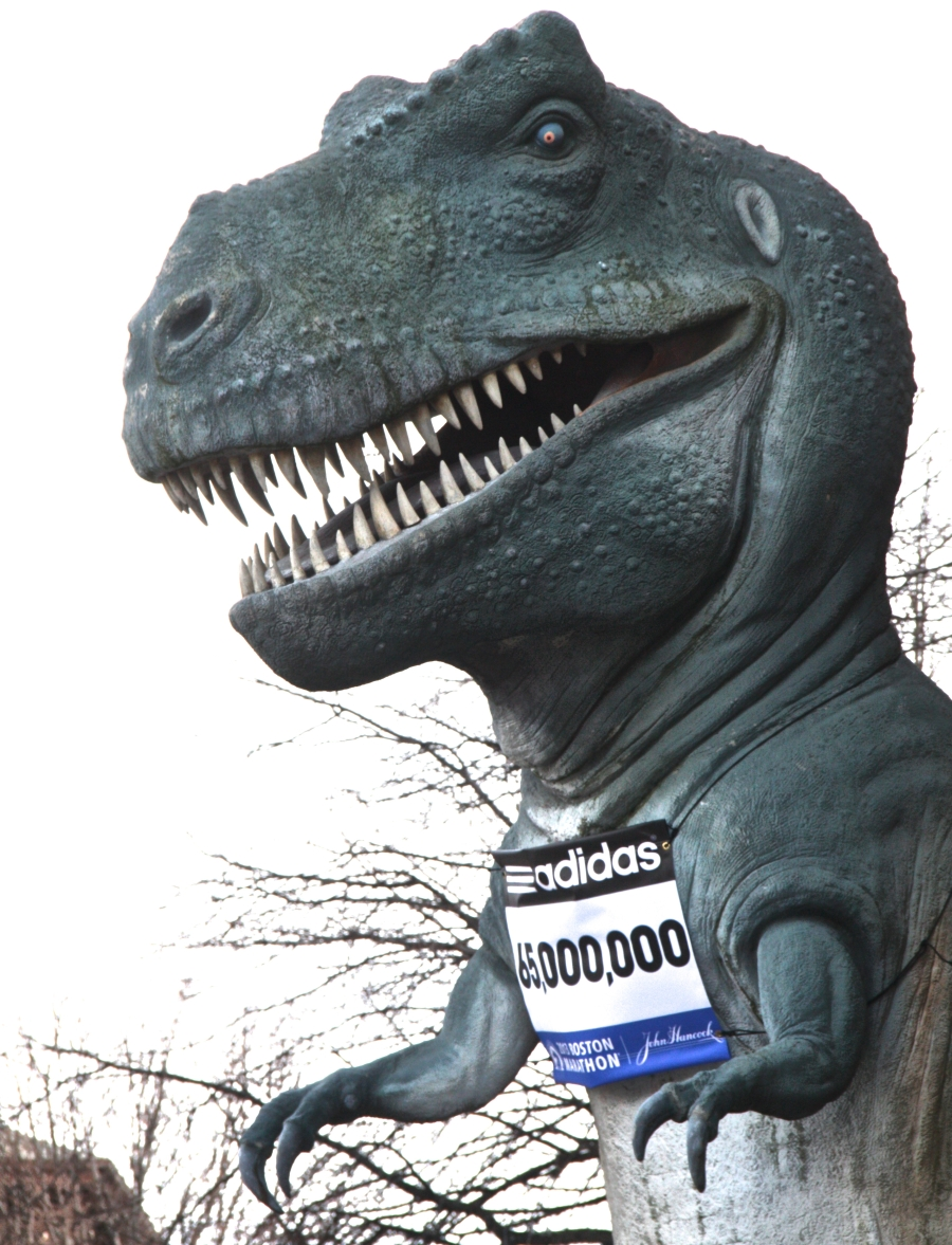 boston science museum t rex marathon number