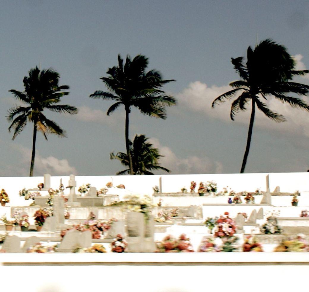cayman islands cemetary sea view