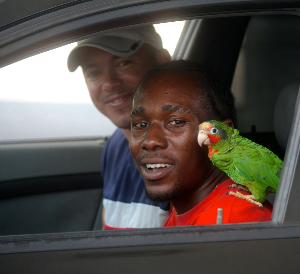 cayman islands gas station man with parrot on shoulder