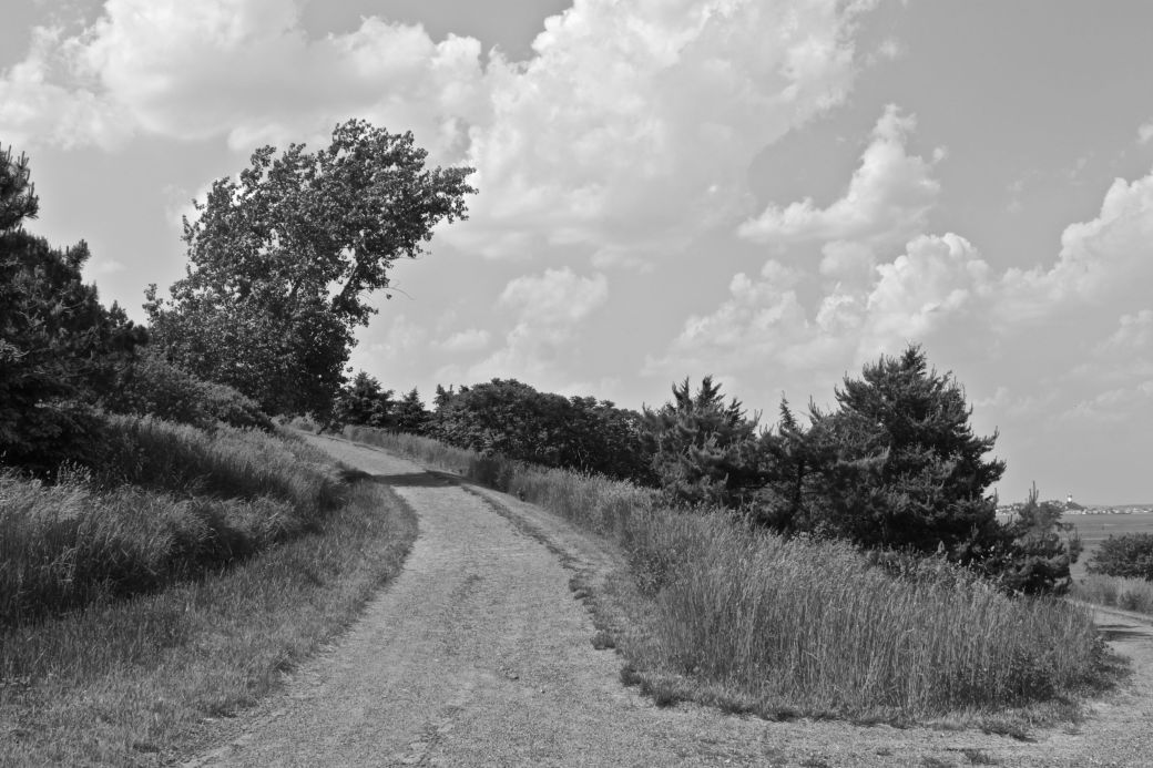 boston harbor spectacle island path black white