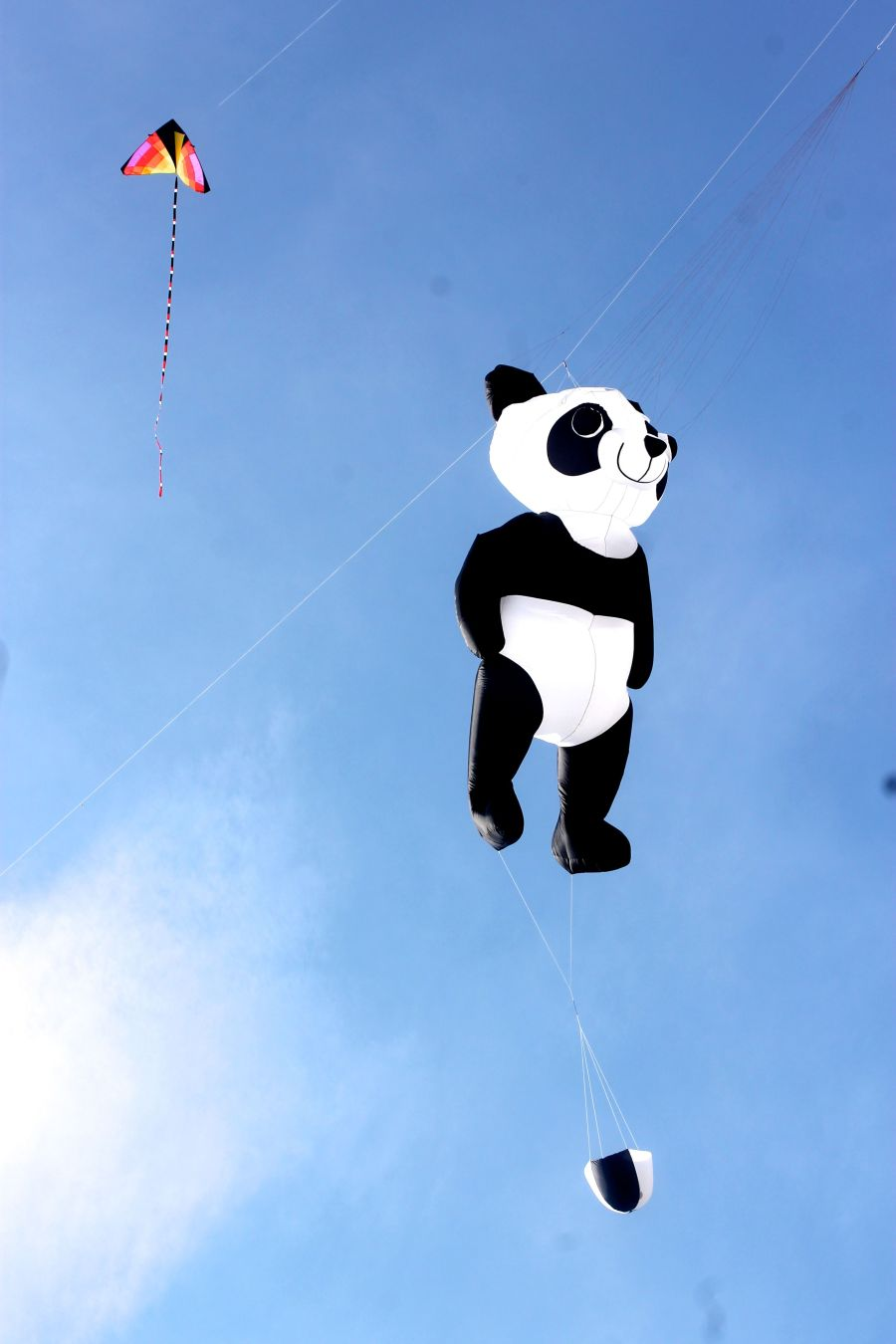 boston revere beach National Sand Sculpting Festival panda kite 2