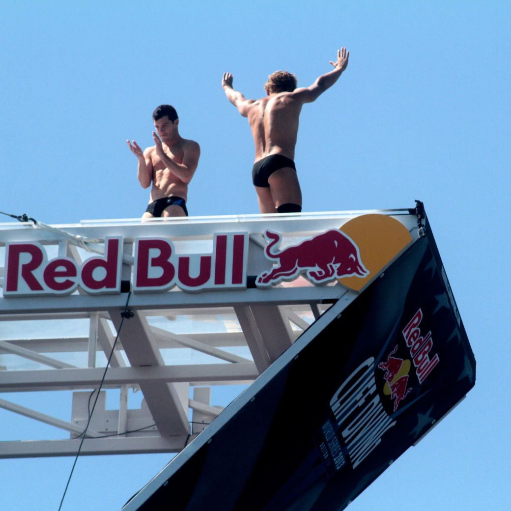 boston institute of contemporary art red bull diving competition august 25 2013 divers greeting each other