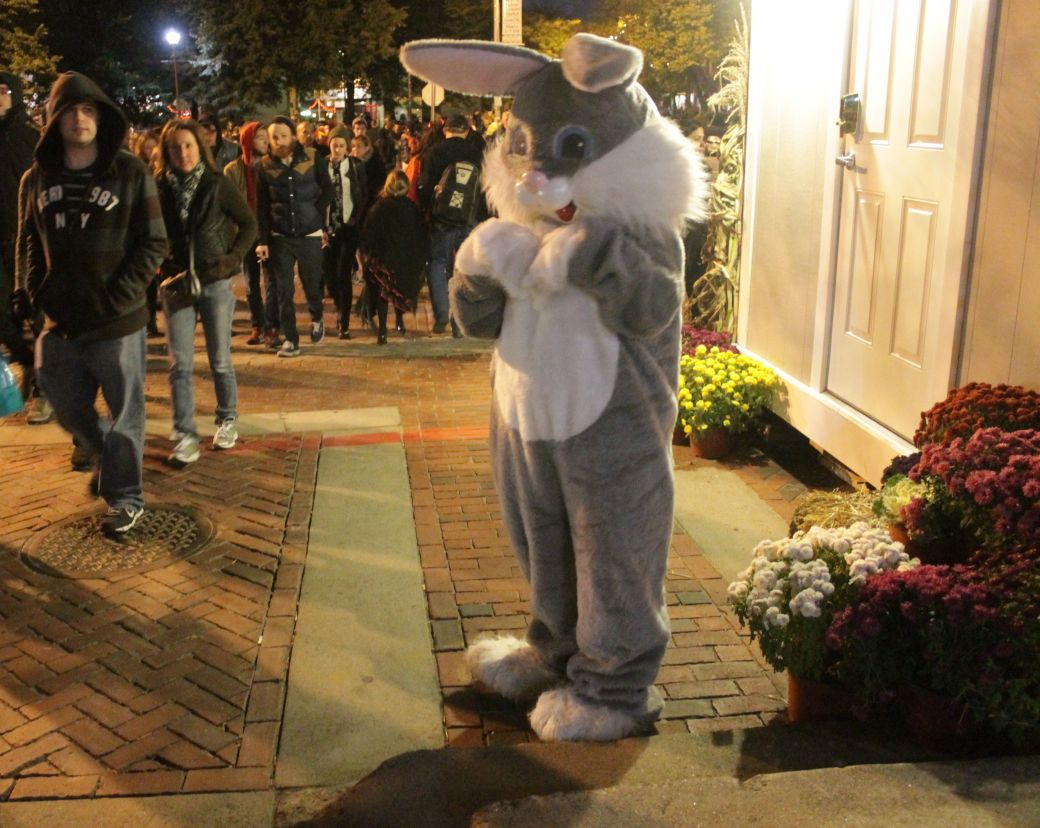 salem halloween 2013 bunny night time