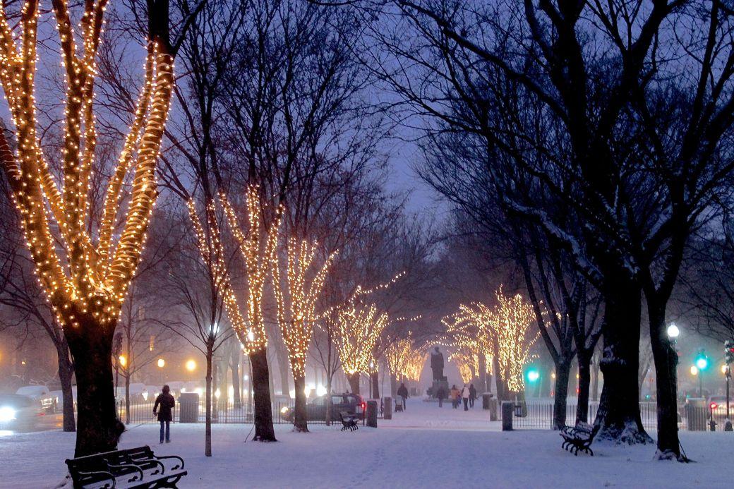 boston commonwealth avenue snow december 14 1