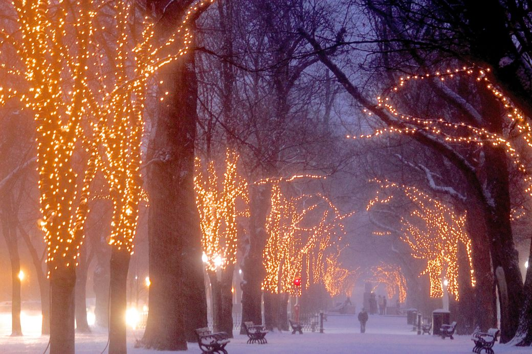 boston commonwealth avenue snow december 14 10