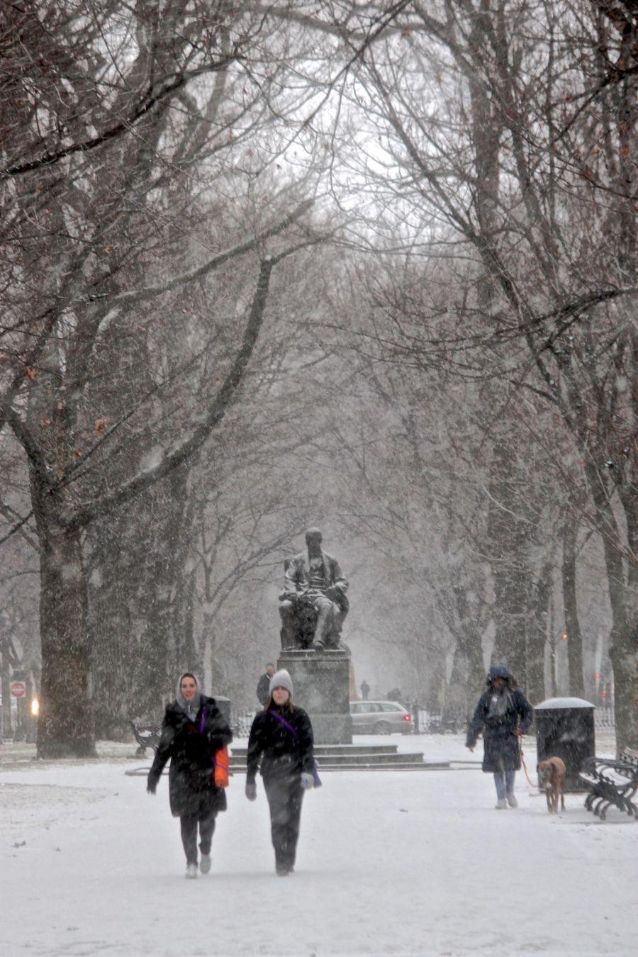 boston commonwealth avenue snow december 14 2