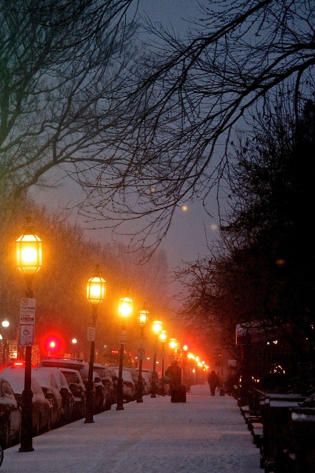 boston commonwealth avenue snow december 14 5