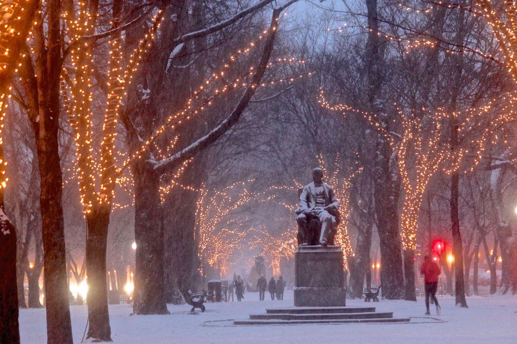 boston commonwealth avenue snow december 14 6