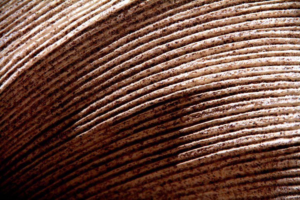 salem peabody essex museum vase curve 2