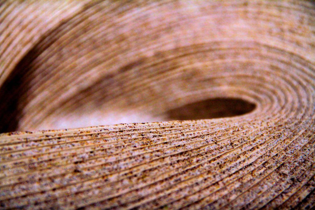 salem peabody essex museum vase curve