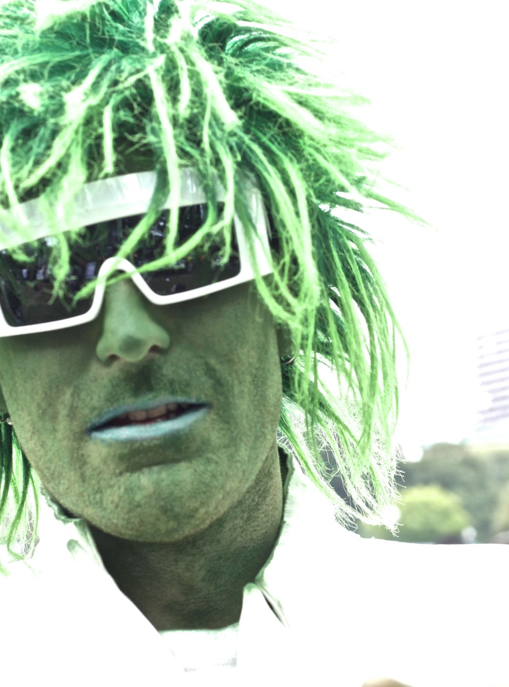 boston hemp fest 2014 park street people green man