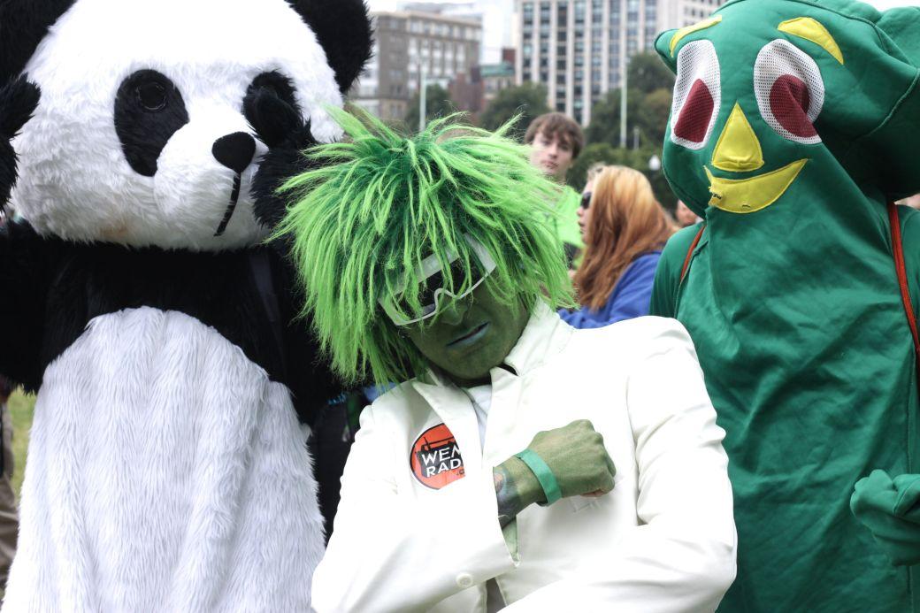 boston hemp fest 2014 park street people panda green man gumby