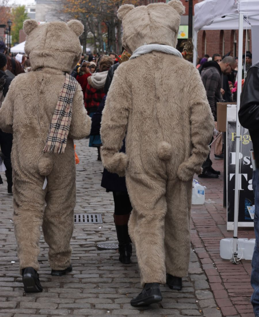 salem halloween october 31 2014 bear suits