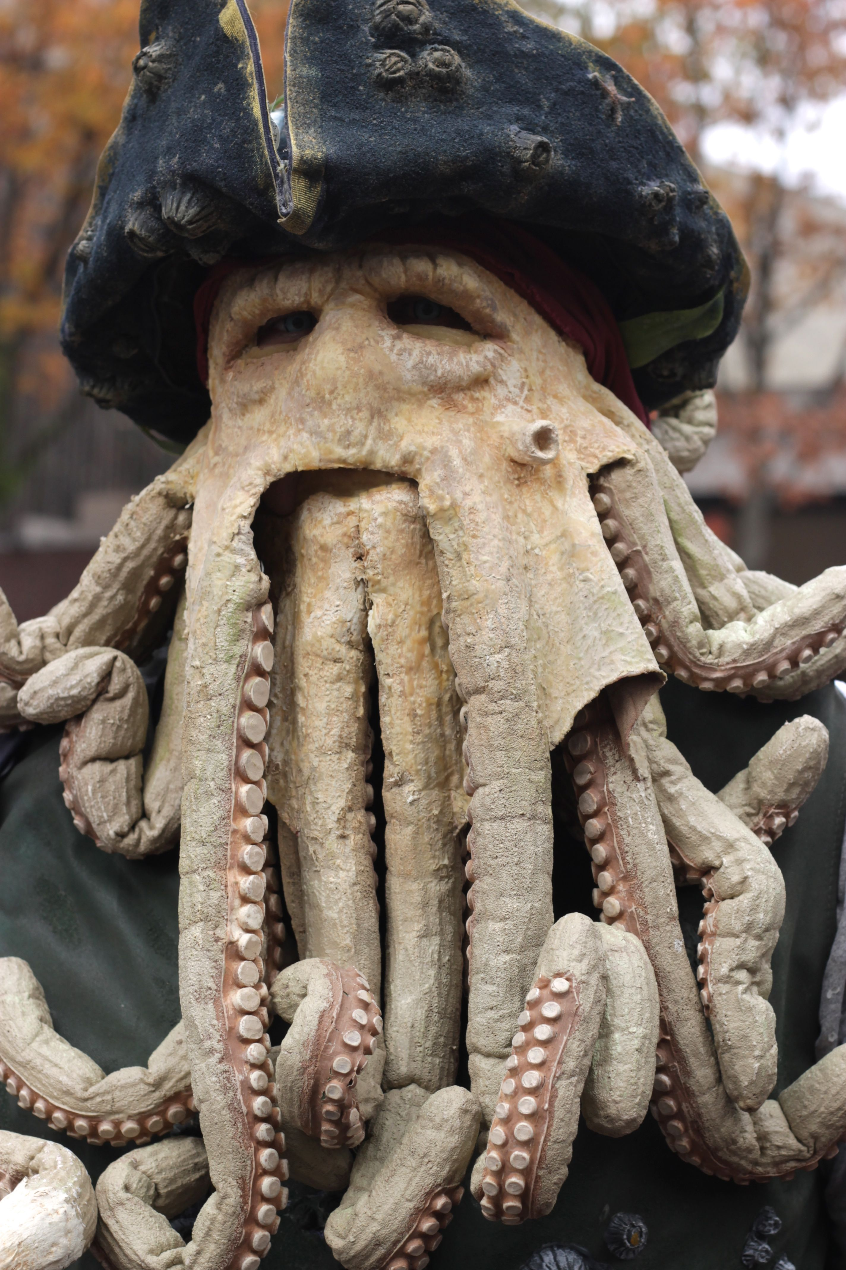 Geometric Animal Drawing Octopus Face