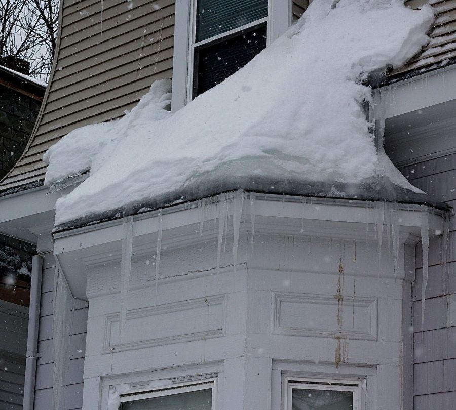 boston jamaica plain winter february 17 2015 icicles