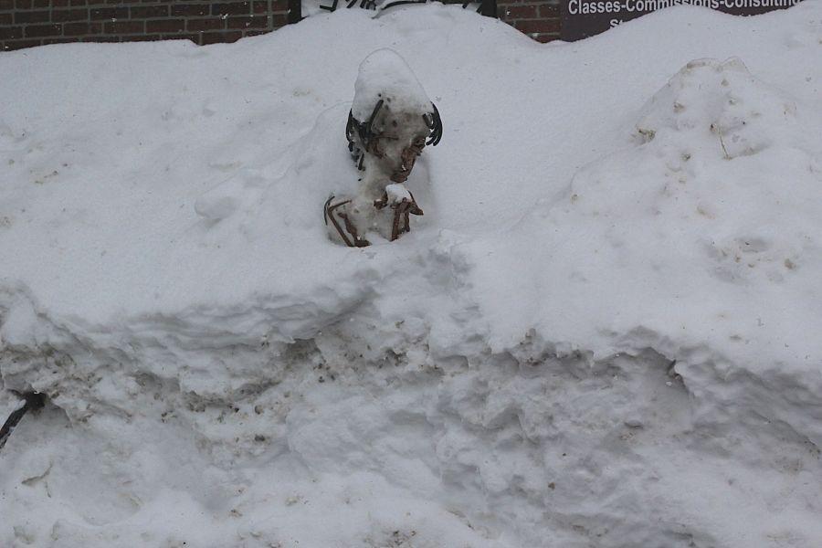 boston jamaica plain winter february 17 2015 statue snow
