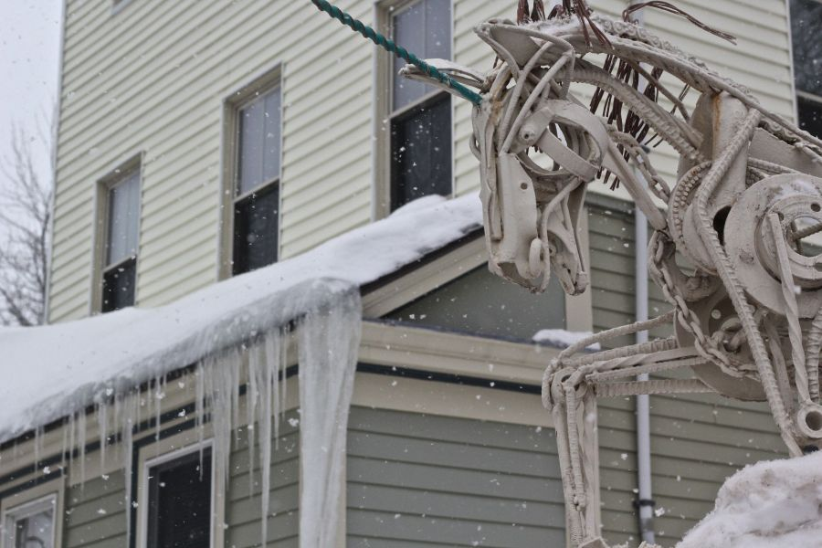 boston jamaica plain winter february 17 2015 wire horse icicles