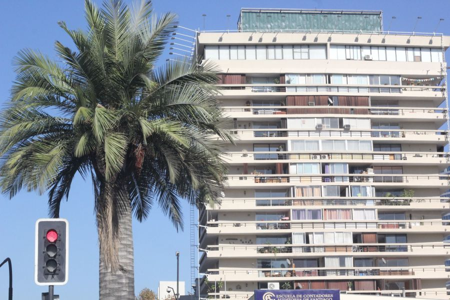 chile santiago palm tree apartment building