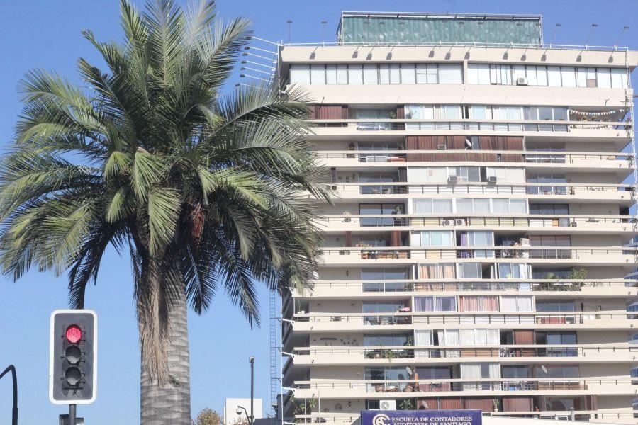 chile santiago palm tree apartment building
