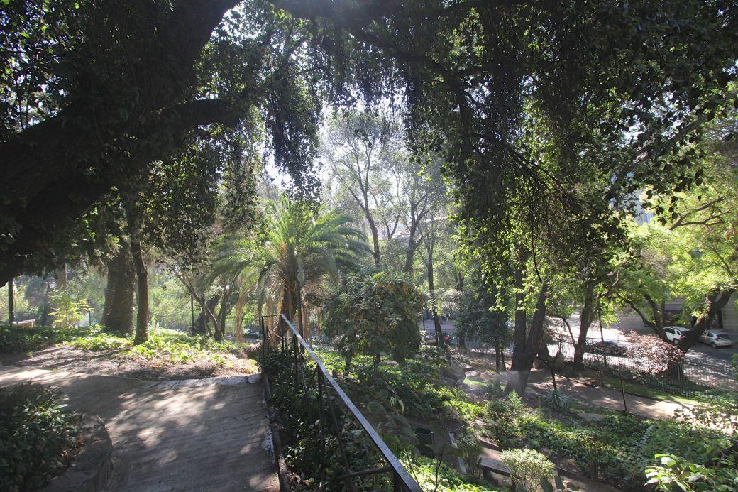 santiago chile santa lucia hill vegetation view
