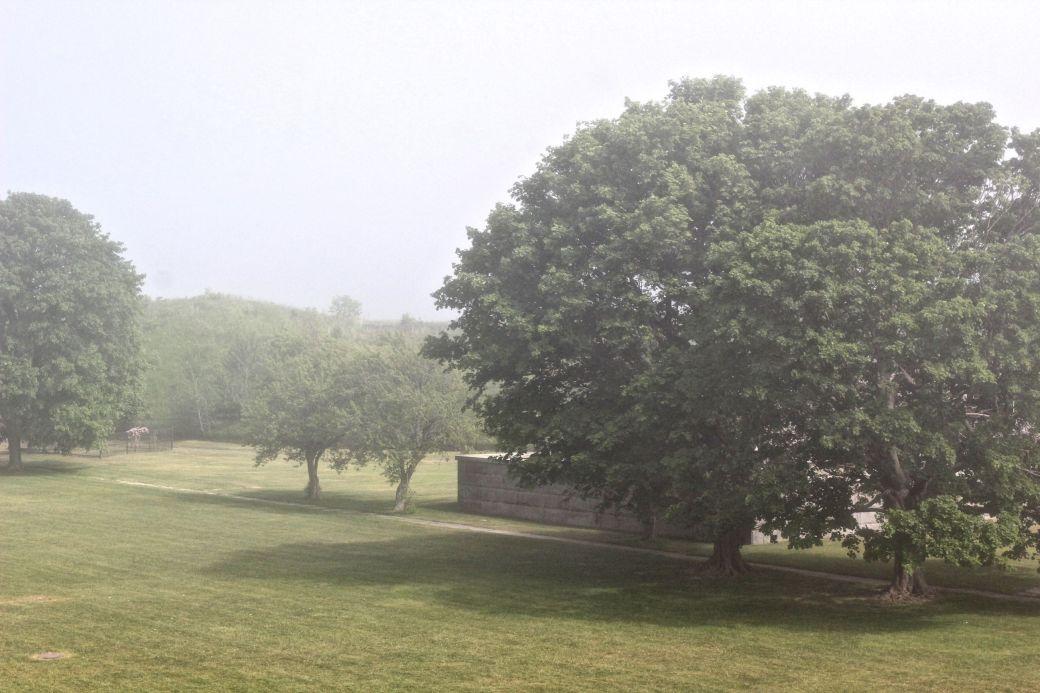boston harbor island george's island field fog 2