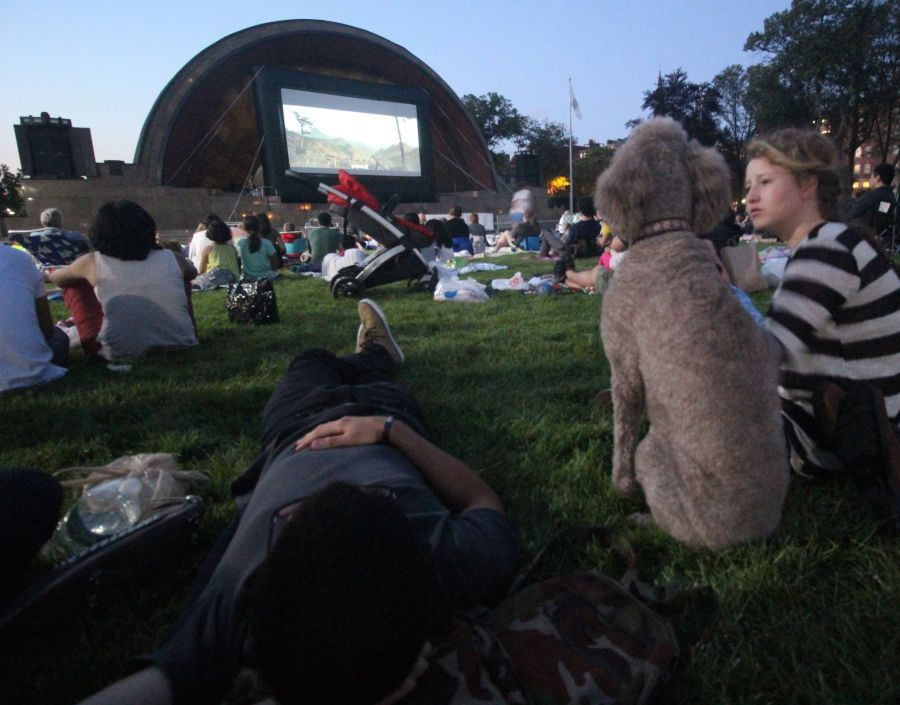 boston hatch shell night movie people woman with dog 1