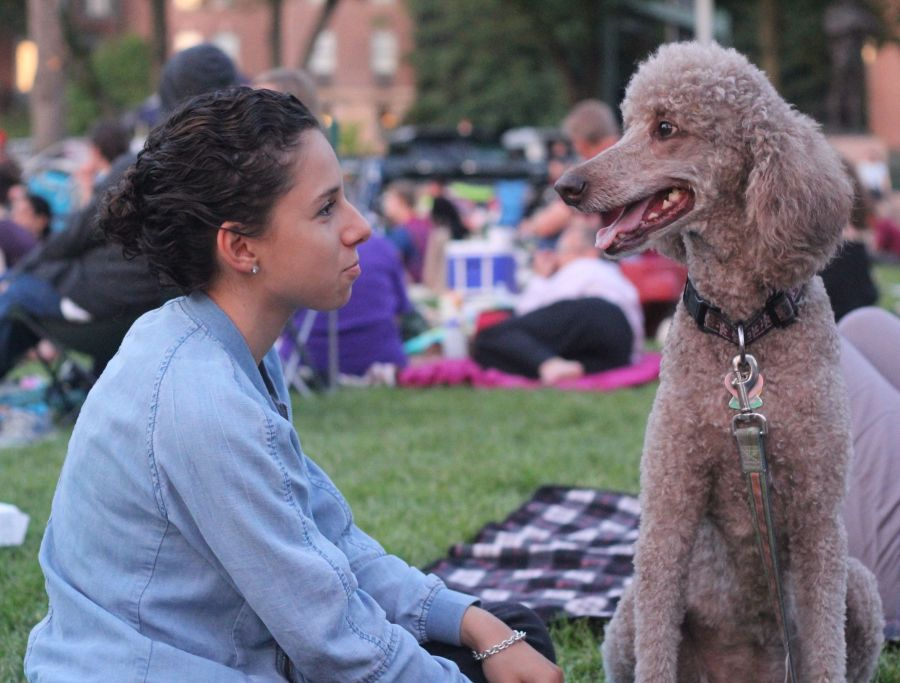 boston hatch shell night movie people woman with dog