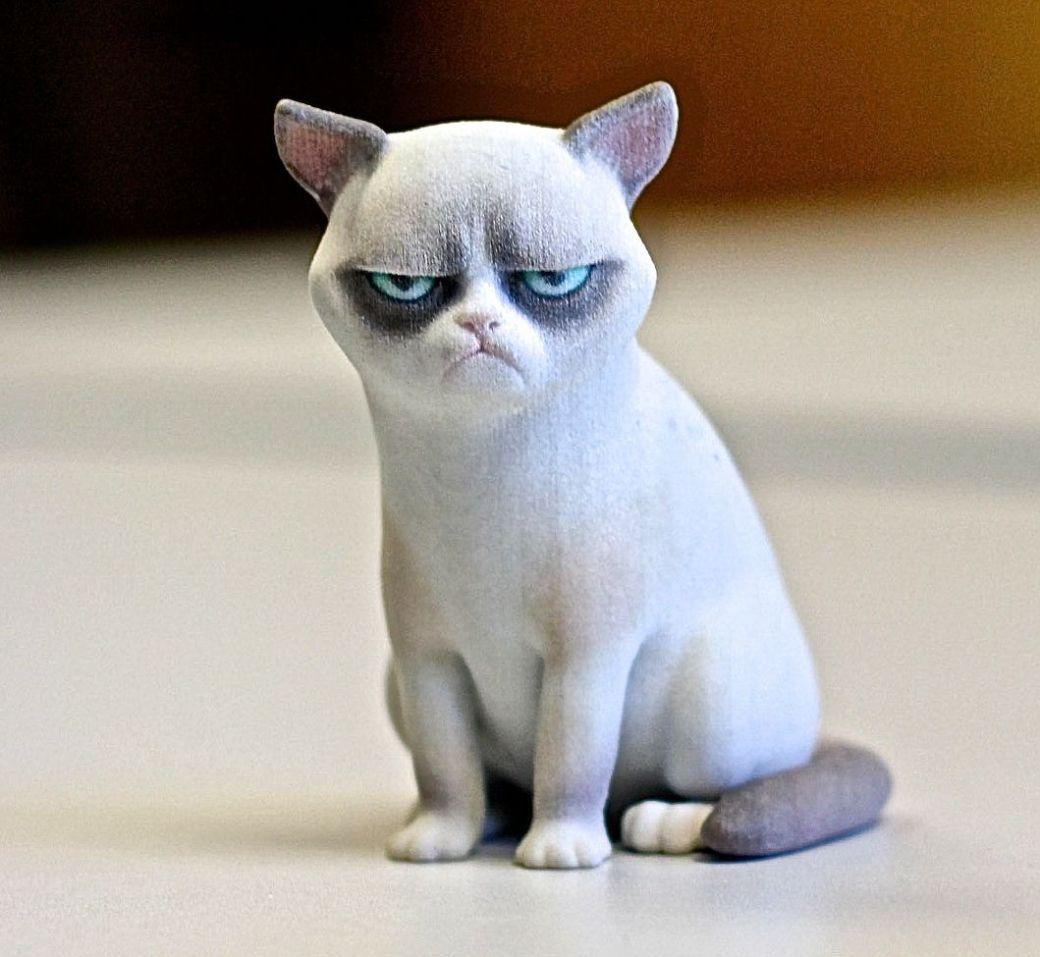 cambridge MIT museum 3D printed grumpy cat