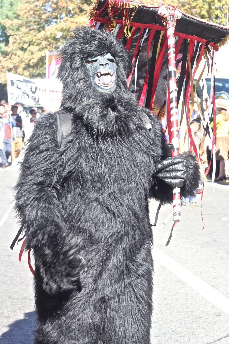 cambridge honkfest october 11 2015 31