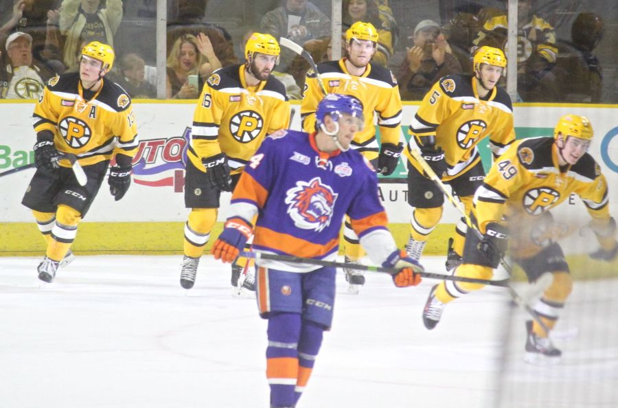 providence bruins bridgeport sound tigers game october 16 7