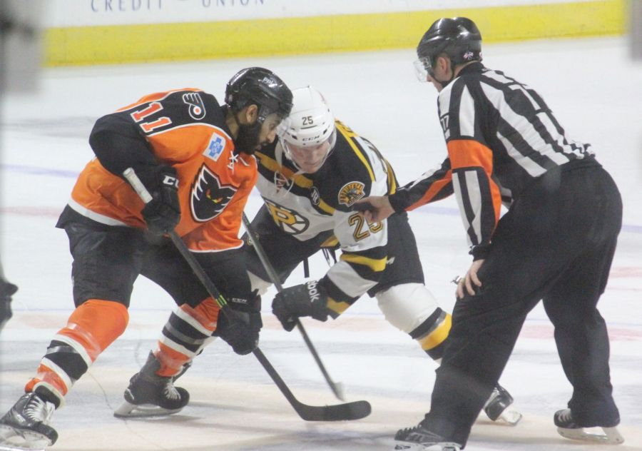 providence bruins lehigh valley phantoms 12