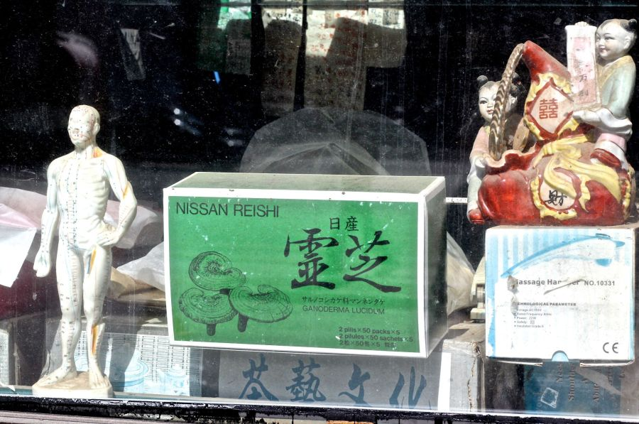 boston chinatown window display