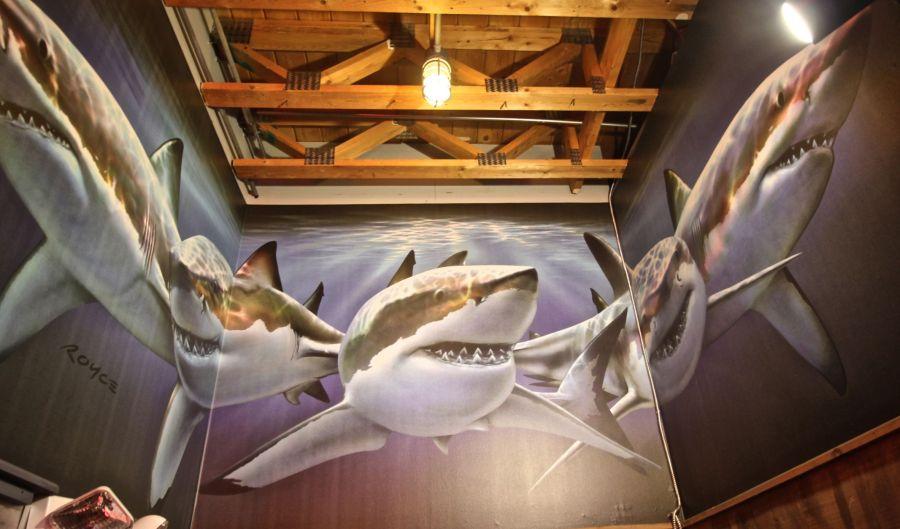 maine mount desert island bar harbor geddy's sharks