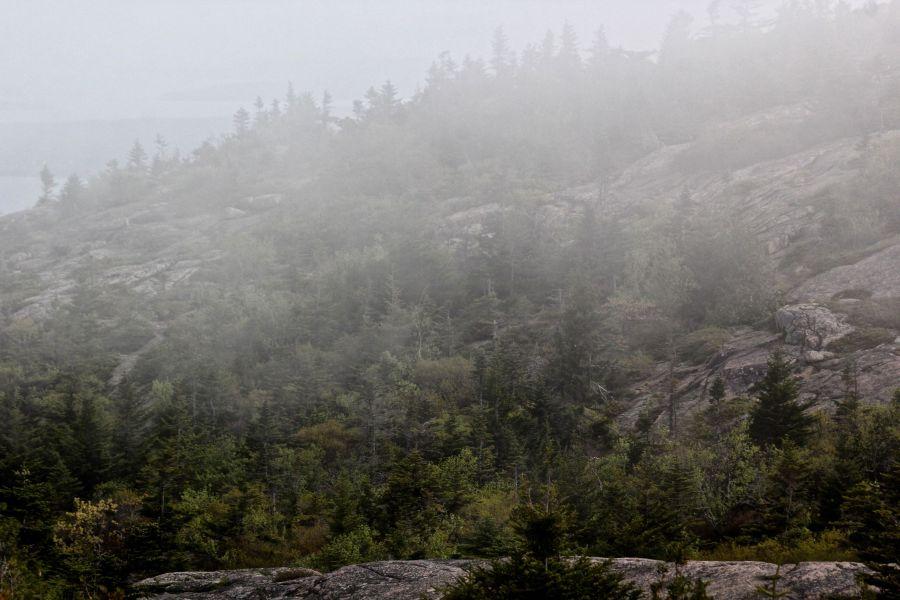 maine mount desert island cadillac mountain mist 2