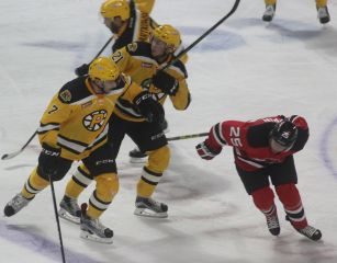 providence-bruins-albany-devils-game-october-14-2016-16