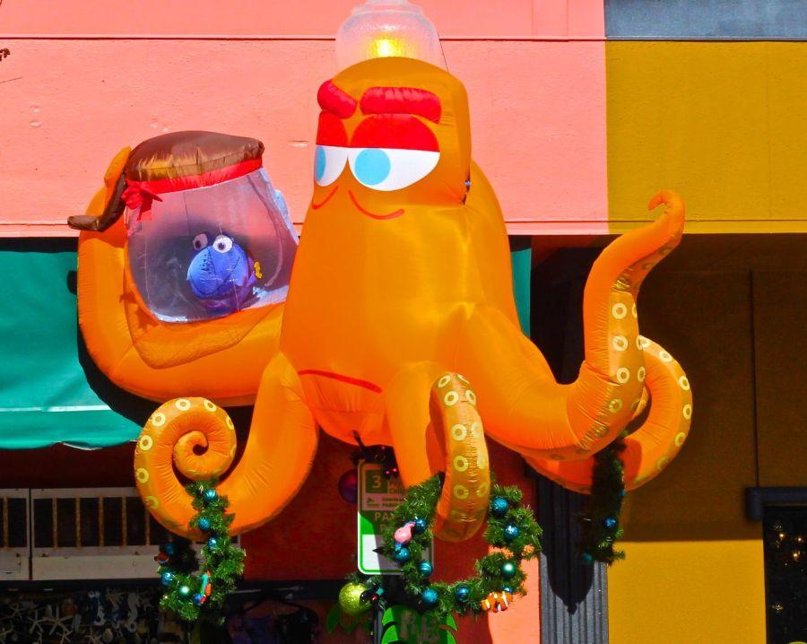 dunedin-downtown-octopus-christmas-decoration