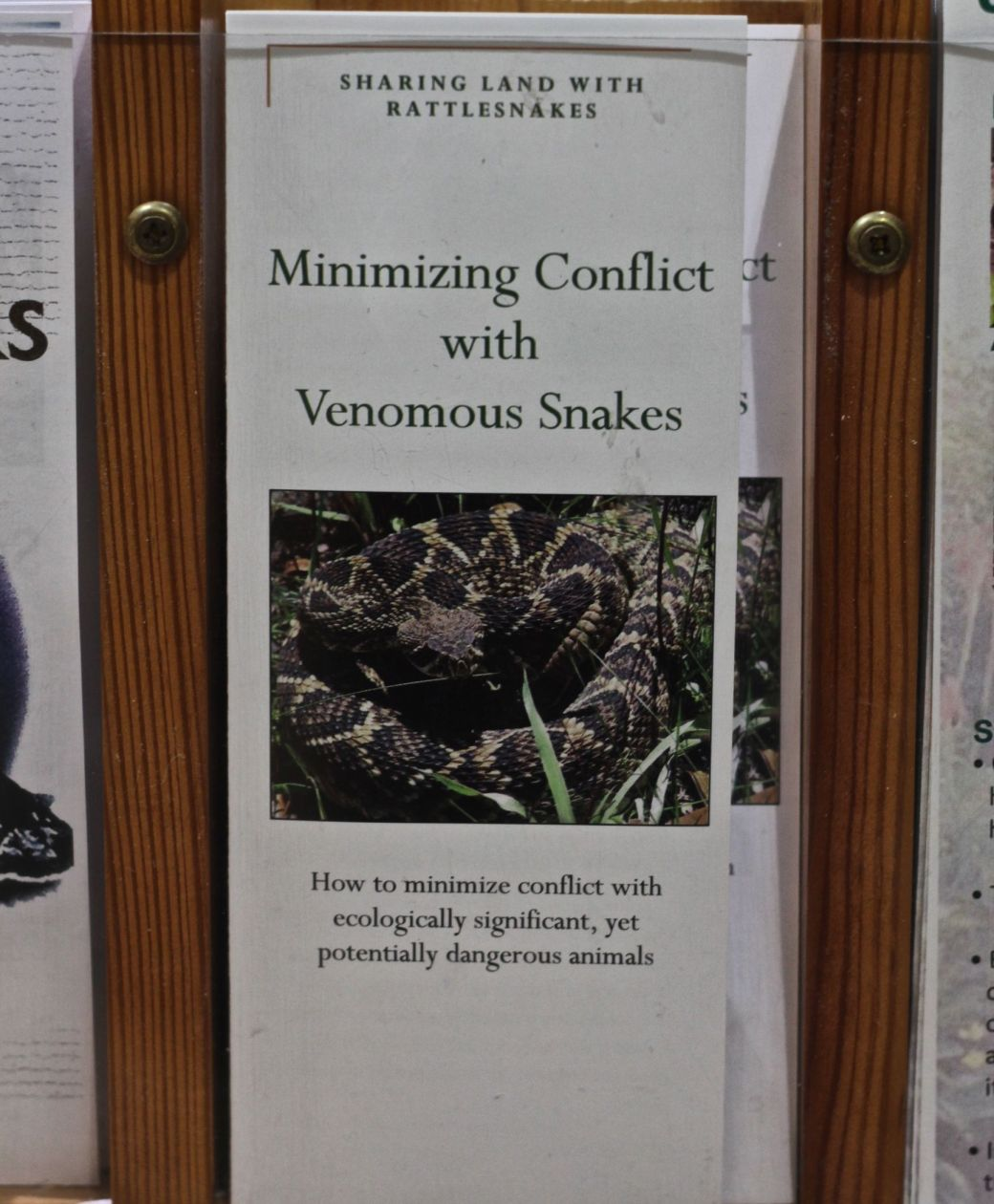 lake-maggiore-florida-nature-preserve-brochure-minimizing-contact-with-poisonous-snakes