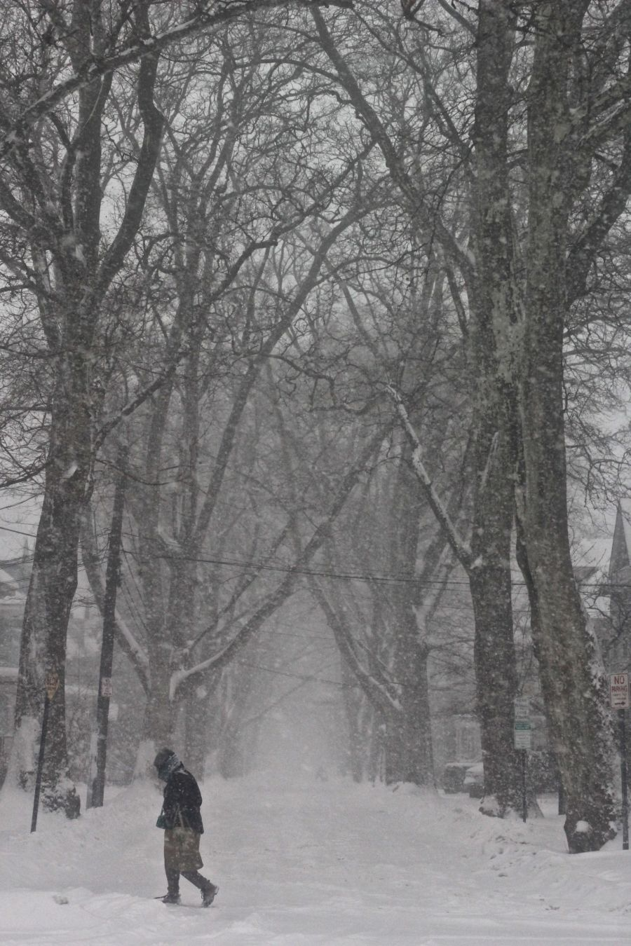 boston-snow-storm-february-9-2017-17
