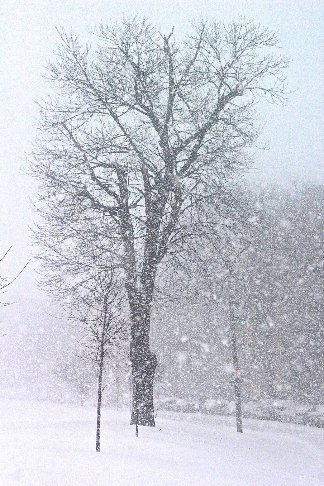 boston-snow-storm-february-9-2017-8