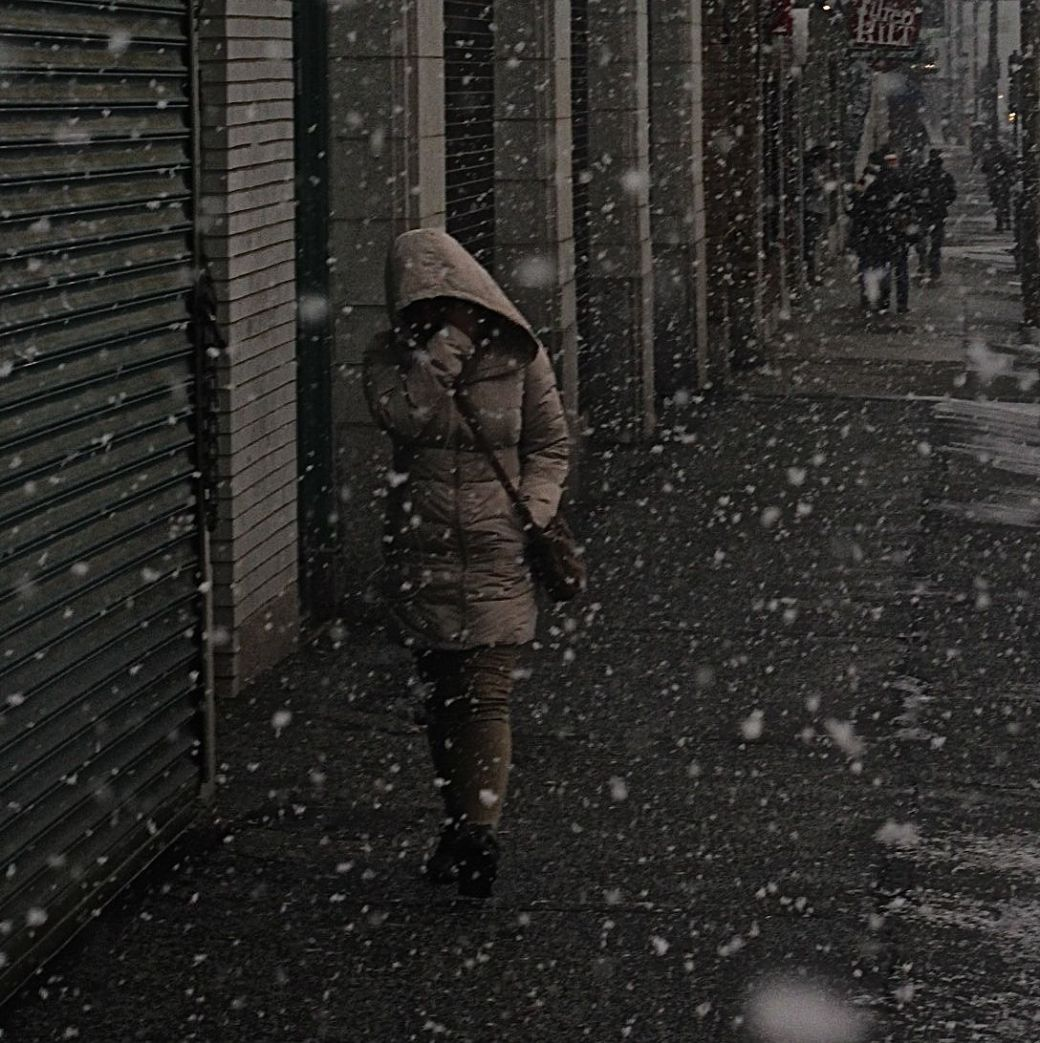boston fenway snow 5