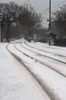 boston beacon street january 20 2019 snow 11