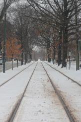 boston beacon street january 20 2019 snow 17