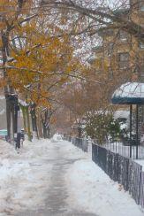 boston beacon street january 20 2019 snow 19