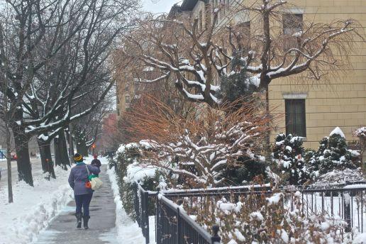 boston beacon street january 20 2019 snow 22